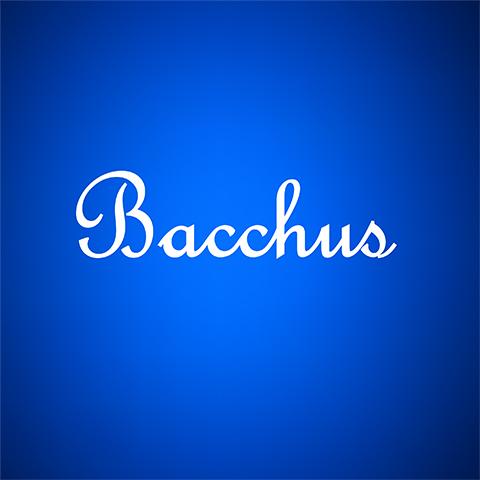 広島県 福山・尾道・三原 キャバクラ Bacchus-バッカス-の店舗画像