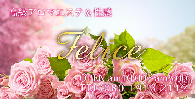 福山・三原  高級アロマエステ&性感 Felice-フェリーチェ-の店舗画像1